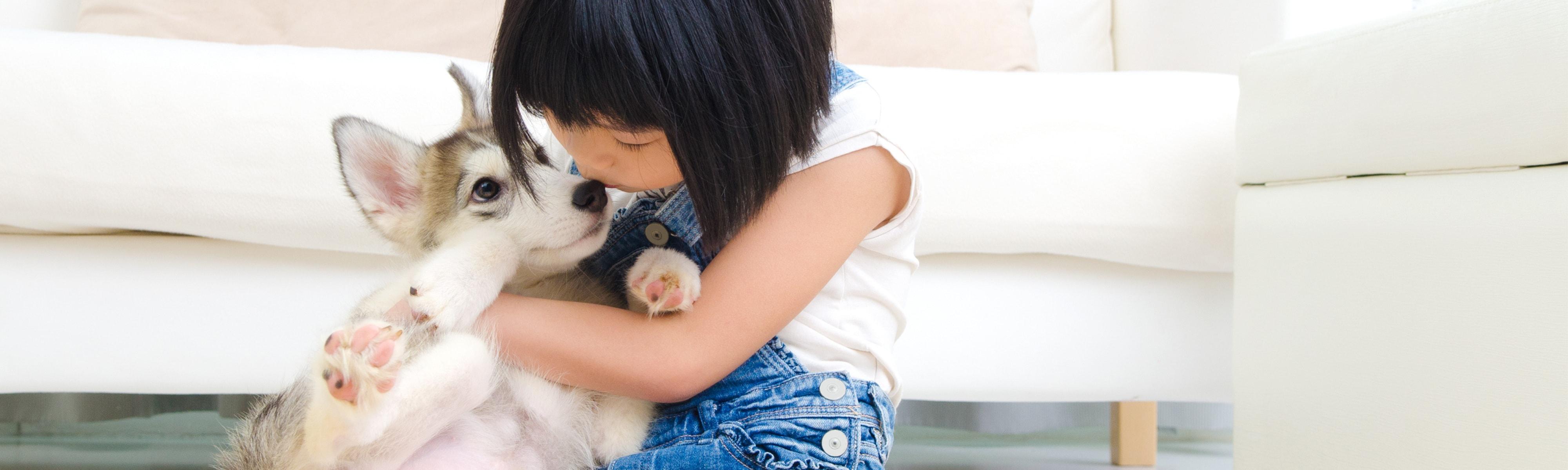 A cute child hugging a puppy.