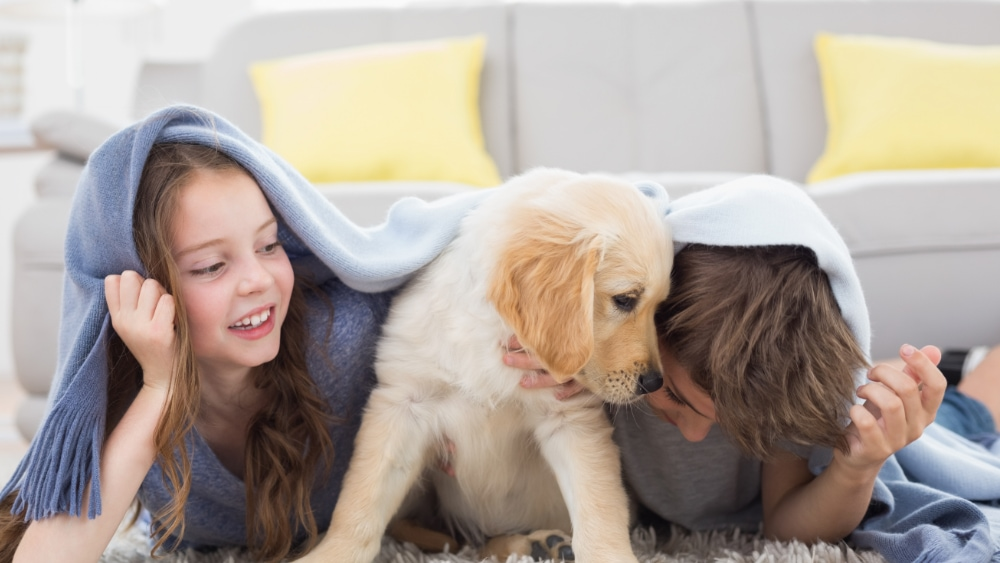 Kids under a blanket with a puppy.